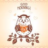 Manhã da coruja Imagens de Stock
