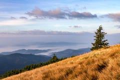 Manhã da montanha do outono acima das nuvens Fotografia de Stock