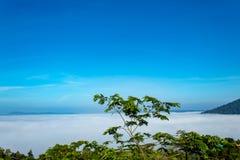 Manhã da névoa e do sol após a montanha imagens de stock royalty free