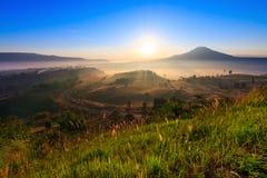 Manhã da natureza da beleza Imagens de Stock