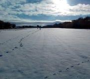 Manhã da neve Imagem de Stock