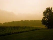 Manhã de Indiana Fotografia de Stock