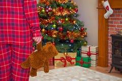 Manhã de Natal Fotos de Stock