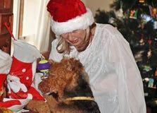 Manhã de Natal madura da meia da abertura da mulher e do cão de estimação Fotos de Stock Royalty Free