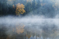 Manhã de outubro Imagem de Stock
