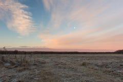 Manhã do campo do russo Nascer do sol bonito do rosa do inverno sobre o campo nevado Fotos de Stock