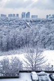 Manhã do inverno de Toronto Imagem de Stock