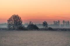 Manhã do inverno em Teufelsmoor perto de Brema Alemanha Foto de Stock Royalty Free