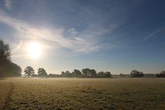 Manhã do inverno no campo Fotografia de Stock Royalty Free