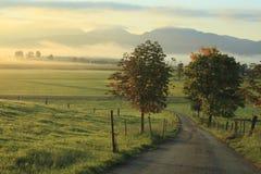 Manhã do outono Foto de Stock Royalty Free