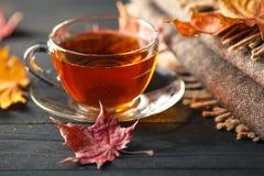 Manhã do outono com copo de chá Fotos de Stock Royalty Free