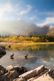Manhã do outono nos cumes Imagens de Stock Royalty Free