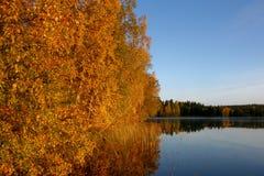 Manhã do outono pelo lago Imagens de Stock Royalty Free
