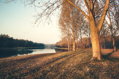 Manhã do outono sobre o rio Imagem de Stock Royalty Free