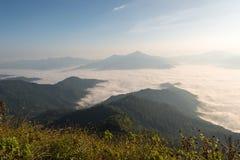 A manhã e a névoa cobrem a montanha em Doi Pha Tang Foto de Stock