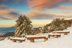 A manhã e o inverno bonitos ajardinam, Carpathians, a Transilvânia, Foto de Stock Royalty Free