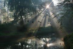 Manhã em cima do rio Fotografia de Stock Royalty Free