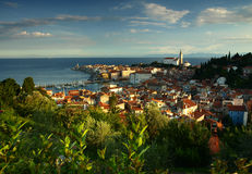 Manhã em Piran pelo mar Mediterrâneo, Eslovênia. fotografia de stock