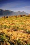 Manhã em Tatras elevado (Vysoké Tatry) Fotografia de Stock Royalty Free