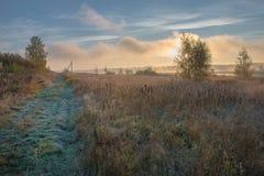 Manhã enevoada do outono Fotografia de Stock Royalty Free