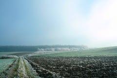 Manhã enevoada e fria Fotografia de Stock Royalty Free