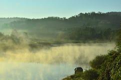Manhã enevoada no lago imagem de stock