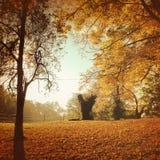 Manhã ensolarada no outono no midwest foto de stock