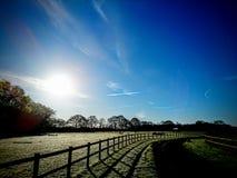 Manhã fresca clara Fotografia de Stock