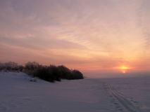 Manhã gelado do inverno. Imagens de Stock Royalty Free