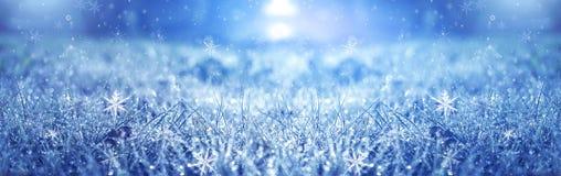 Manhã gelado do inverno Fundo da neve do inverno, cor azul, flocos de neve, luz solar, macro ilustração stock