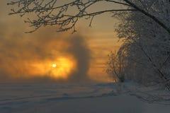 Manhã gelado nevoenta Fotografia de Stock Royalty Free