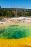 Manhã Glory Pool na bacia superior do geyser Foto de Stock