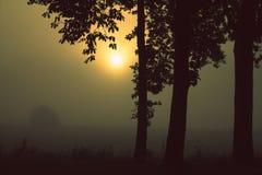 Manhã melancólica em Worpswede (Teufelsmoor) Alemanha Imagens de Stock Royalty Free