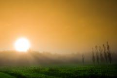 Manhã Mystical Fotografia de Stock