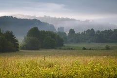Manhã na angra de Cades, parque nacional de Great Smoky Mountains imagem de stock