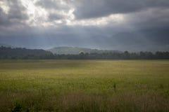 Manhã na angra de Cades, parque nacional de Great Smoky Mountains fotos de stock