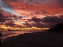 Manhã na praia imagens de stock royalty free