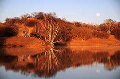 Manhã nas madeiras, refletidas no lago Fotos de Stock Royalty Free