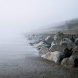 Manhã nevoenta. Fotos de Stock Royalty Free