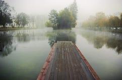 Manhã nevoenta Foto de Stock