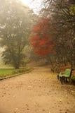 Manhã nevoenta Imagens de Stock Royalty Free