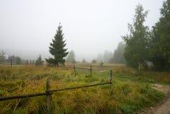 A manhã nevoenta Imagens de Stock