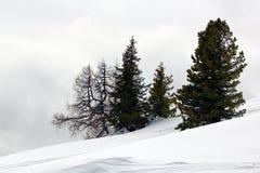 Manhã nevoenta acima nas montanhas imagem de stock royalty free