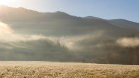 Manhã nevoenta da angra dos cades no grande parque nacional de montanhas fumarentos imagem de stock royalty free