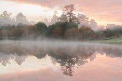 Manhã nevoenta da lagoa Fotografia de Stock Royalty Free