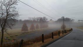 Manhã nevoenta da queda Imagem de Stock Royalty Free
