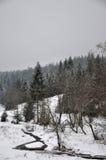 Manhã nevoenta do inverno Foto de Stock Royalty Free