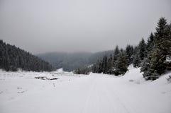 Manhã nevoenta do inverno Fotos de Stock Royalty Free
