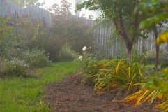 Manhã nevoenta do outono do jardim Imagens de Stock Royalty Free