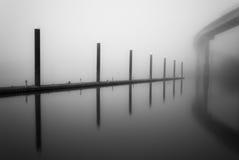 Manhã nevoenta do rio fotografia de stock